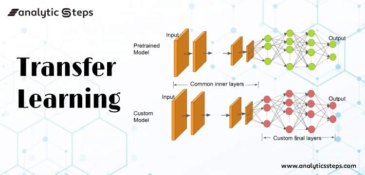How is Transfer Learning done in Neural Networks and Convolutional Neural Networks? title banner